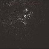 Folteraar (NL) - Vertellingen van een donkere eeuw - LP